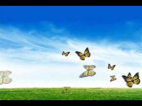 GRATIS protector de pantalla mariposas - YouTube