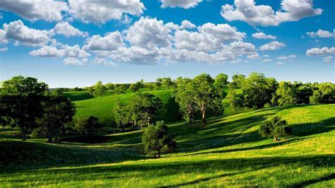 Green Landscape 6956 1920 x 1080   WallpaperLayer.com