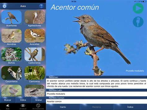 Greenapps&web   Reconoce cantos de aves con esta app