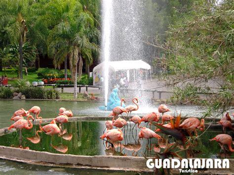 GuadalajaraTurística: Zoológico Guadalajara México