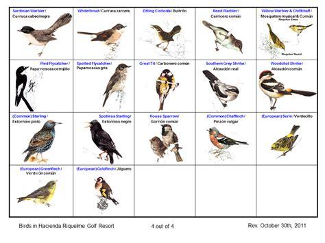 Hacienda Riquelme Blog: Naturaleza y observación de aves ...