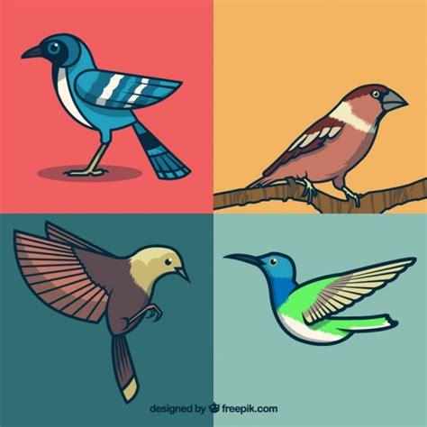 Hand getekende vogel collectie Vector | Gratis Download