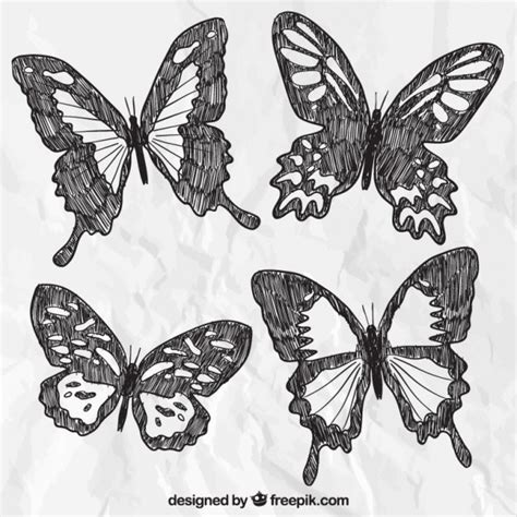 Hand gezeichnete Schmetterlinge | Download der kostenlosen ...