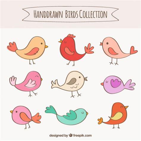 Hand gezeichnete Vögel Sammlung | Download der kostenlosen ...