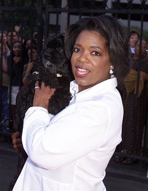 Hard Knock Life: Oprah Winfrey s Amazing Rags to Riches ...