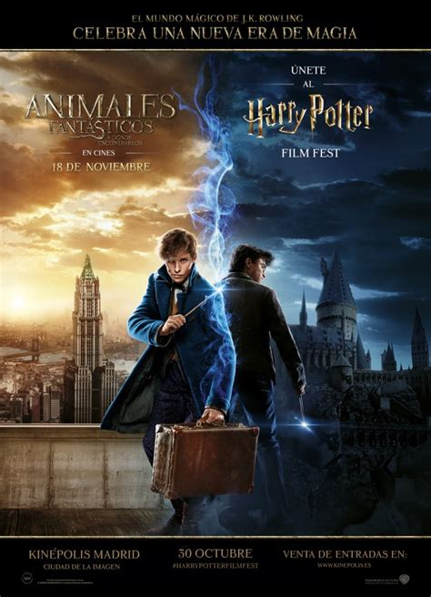 Harry Potter Film Fest: las películas del joven mago ...