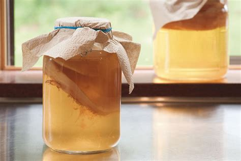 Health benefits of Kombucha And Making it At Home