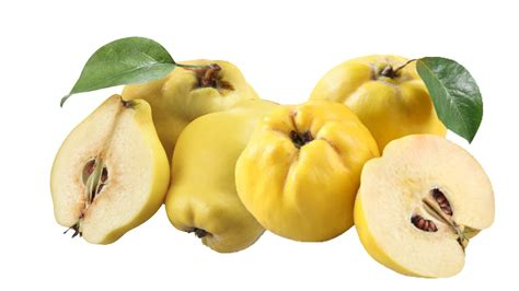 Health Benefits of Quince - Top 10 Benefits - Easy Recipes ...