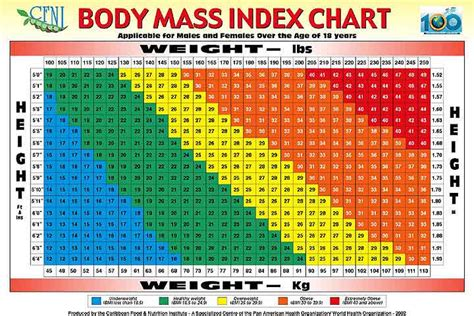 Healthy Bmi Chart For Men Pictures to Pin on Pinterest ...