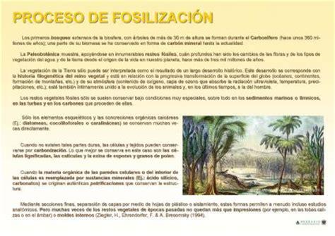 Herbario de la Universidad de Granada > Proceso de ...