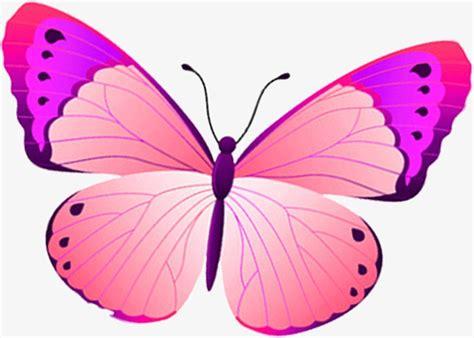 Hermosa Mariposa De Dibujos Animados, Bastante, Cartoon ...