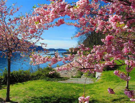 hermosa primavera | Escritos diferentes