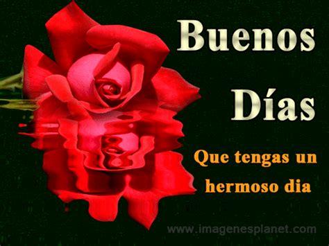 Hermosa rosa de amor con frases de buenos días en ingles ...