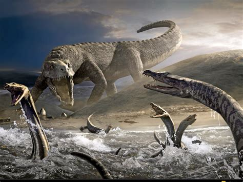 High Definition Photo And Wallpapers: dinosaur wallpapers ...