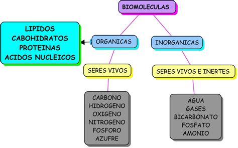 HISTORIA DE LA GEOLOGÍA Y BIOLOGÍA: CRONOLOGÍA EN EL ...