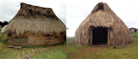 historia de los mapuches: pueblo mapuche
