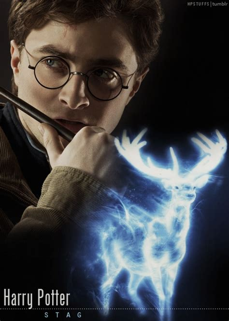 Hogwarts Alumni: Harry Potter Cast Patronus
