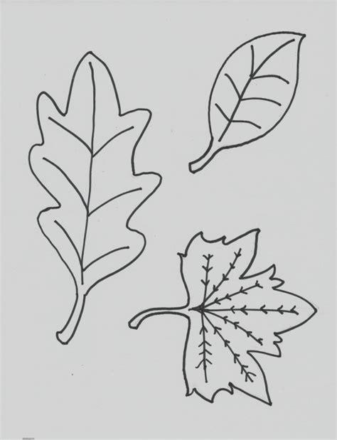 Hojas Para Colorear Una Hoja De Diferentes Plantas ...
