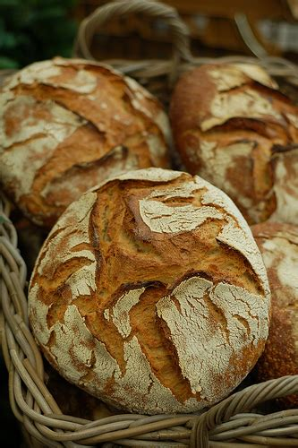 Hola, ¡llevo pan! | sloyu.com