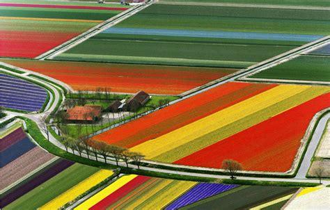 Holanda es un país increíble y estas imágenes lo ...