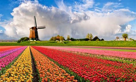 Holanda: un país de cuento – Miss Viajes
