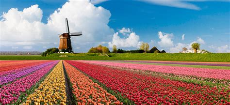 Holanda, un País por descubrir   Amsterdam