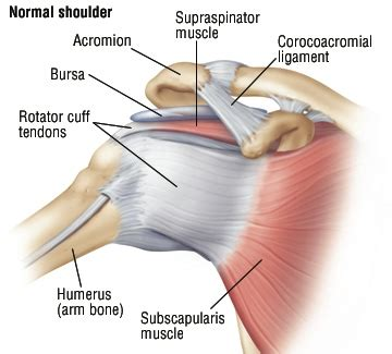 How can I fix my niggly shoulder? - Glow Physio