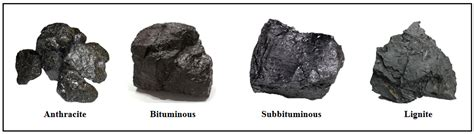 How coal is formed