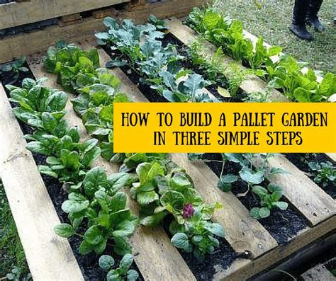 How to Build a Pallet Garden in Three Simple Steps ...