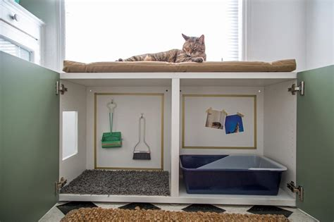 How to Conceal a Kitty Litter Box Inside a Cabinet | how ...