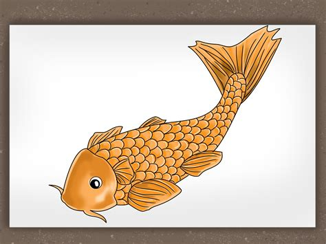 How to Draw a Koi Fish: 7 Steps  with Pictures    wikiHow