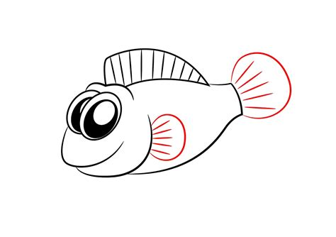 How to draw fish gill