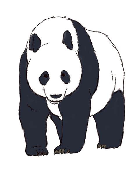 How to Draw Realistic Panda Bears -- via wikiHow.com ...