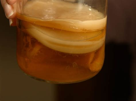 How to Make Kombucha - Cultured Food Life