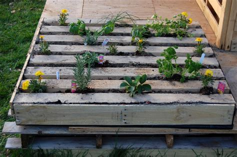 How to Plant an Herb Garden in a Salvage Wood Pallet | how ...
