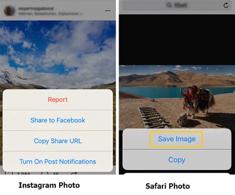 How to Save Instagram Photos on iPhone/PC?
