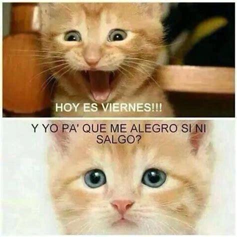 Hoy es viernes !! | Humor mexicano | Frases de viernes ...