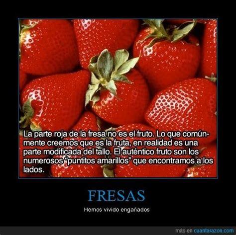http://www.cuantarazon.com/788914/fresas ¿Lo sabías ...