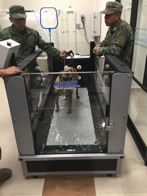 Hudson's AquaPaws System Installed at a Mexican Military ...