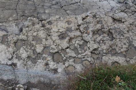 Huellas de dinosaurio: fotografía de Yacimiento de Icnitas ...