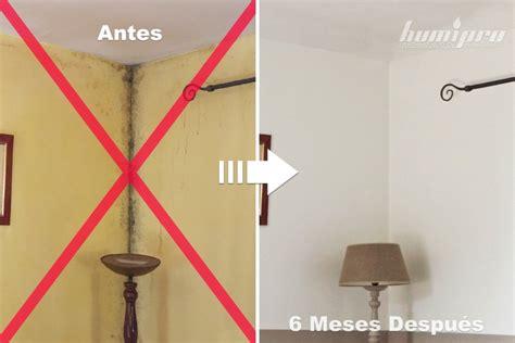Humedad En Paredes Interiores Solucion. Awesome With ...