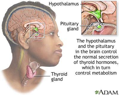 Hypothyroidism: MedlinePlus Medical Encyclopedia