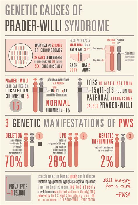 I made this infographic to describe the genetic causes of ...