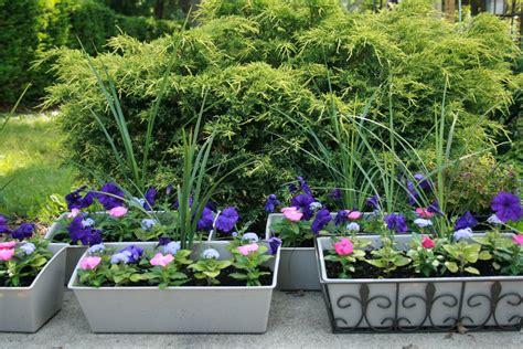 Ideas para decorar su jardín con plantas y flores hermosas