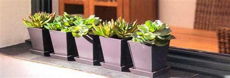 Ideas para decorar tu hogar con plantas. | Garden ...