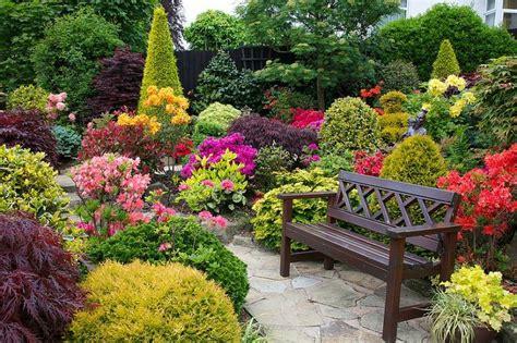 Ideas y consejos para decorar exteriores con plantas y flores