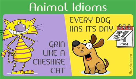 Idioms And Their Meanings | www.imagenesmy.com