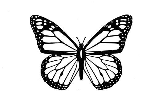 Illustration gratuite: Papillon, Noir Et Blanc   Image ...