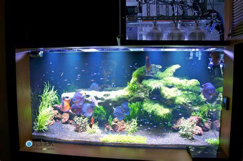 Iluminación de acuario de agua dulce plantada • Orphek