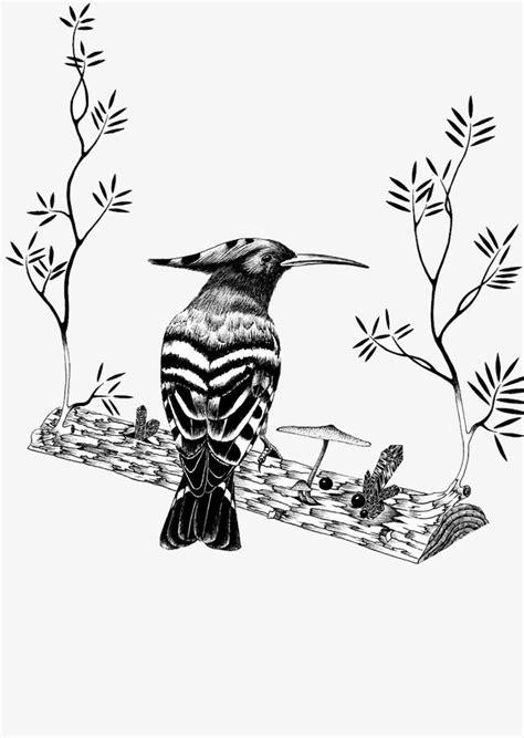 Ilustracion Creativa De Pajaros De Color Blanco Y Negro ...